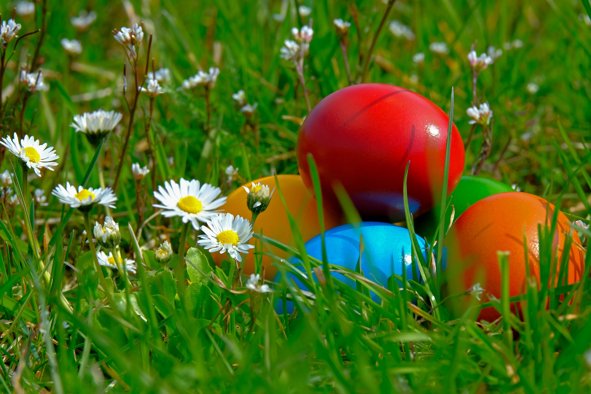 Photo of Easter eggs on a lawn